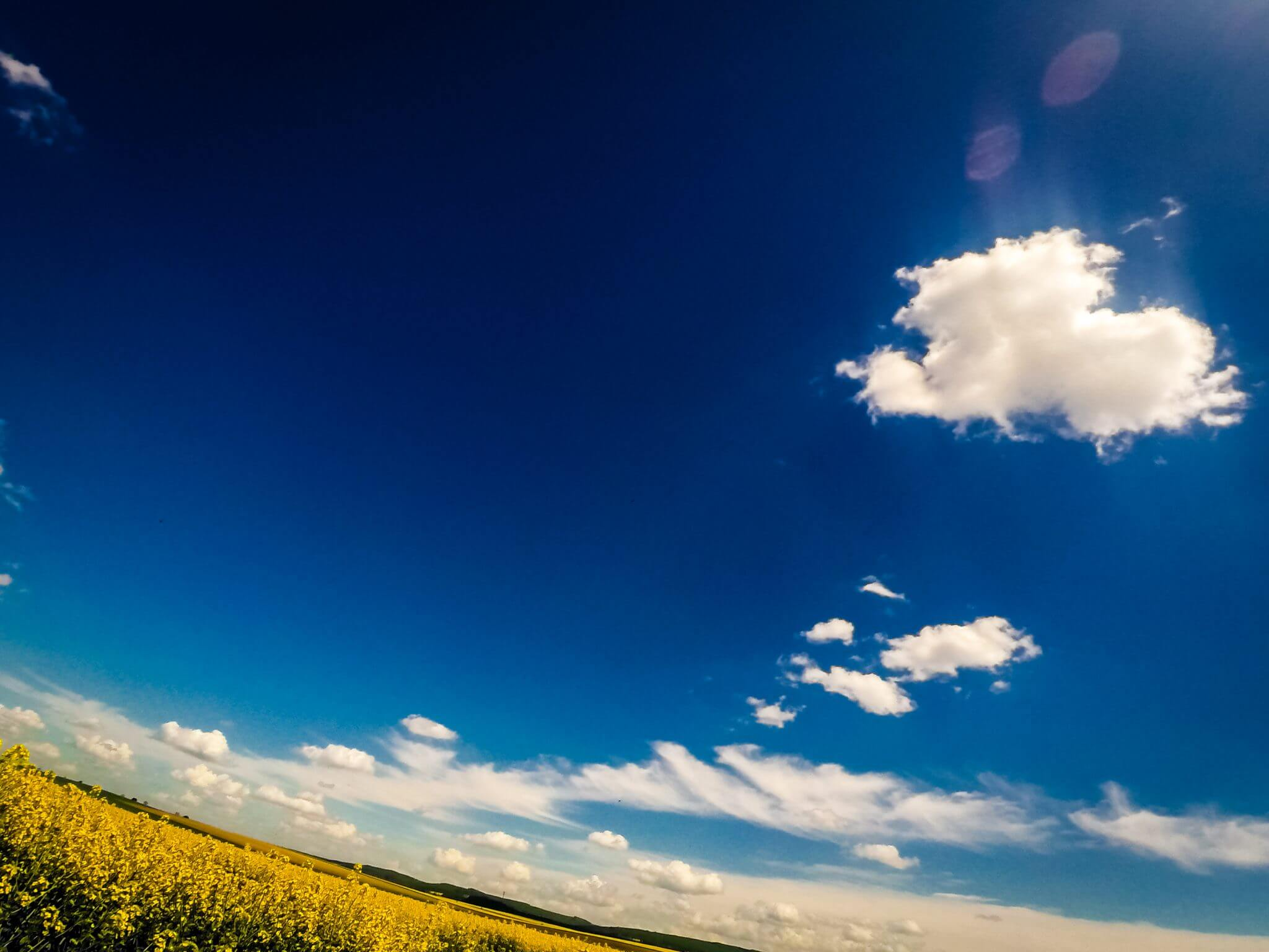 Blauer Himmel gelbes Feld