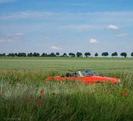 Rotes Auto im grünen Feld