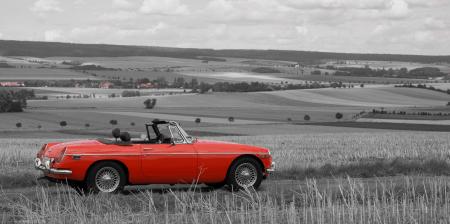 redblack MG Stoppelfeld